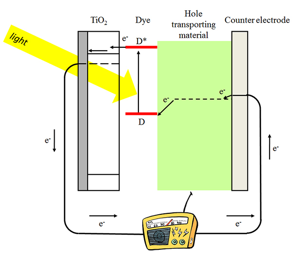 Dye-sensitized solar cells work as follows: The dye absorbs light and injects an electron into the TiO2. It gets an electron back from the hole conductor. Electrons in TiO2 are collected and perform work outside the cell. They return to the cell at the counter electrode, where they are taken up by the hole conductor.