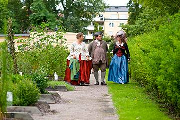 A Linnaean Garden Party